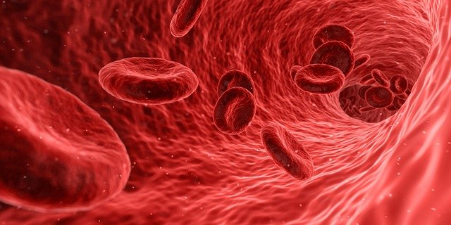 kri, blood, krvne bolezni